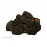 Trufe negre (tuber aestivum vit)