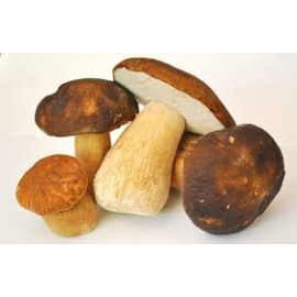 Frozen mushrooms (Boletus edilius)1kg