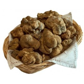 Products with white truffle
